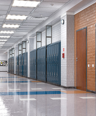 School litigation