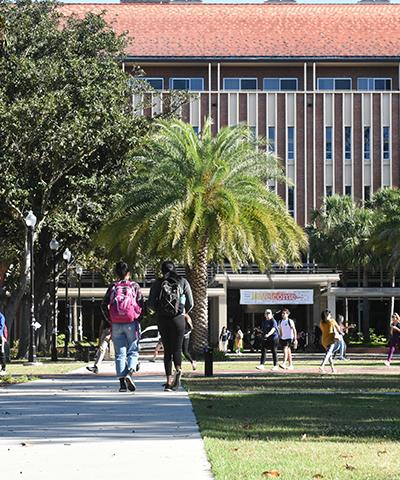 University litigation